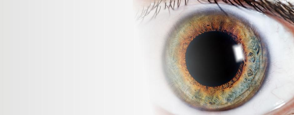 Adult-OcularOncology